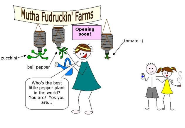 farmer-sarah