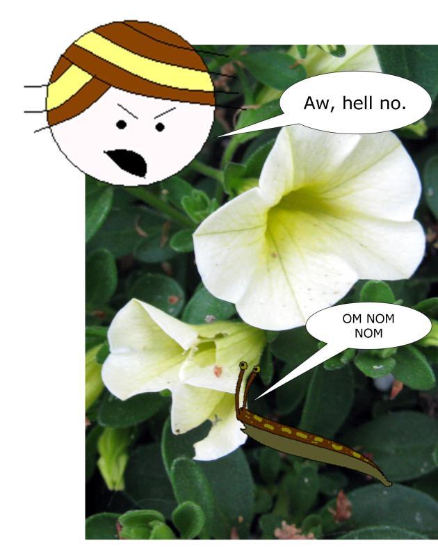 F--- you, slug.
