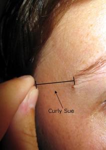 Curly Sue, aka my long eyebrow hair